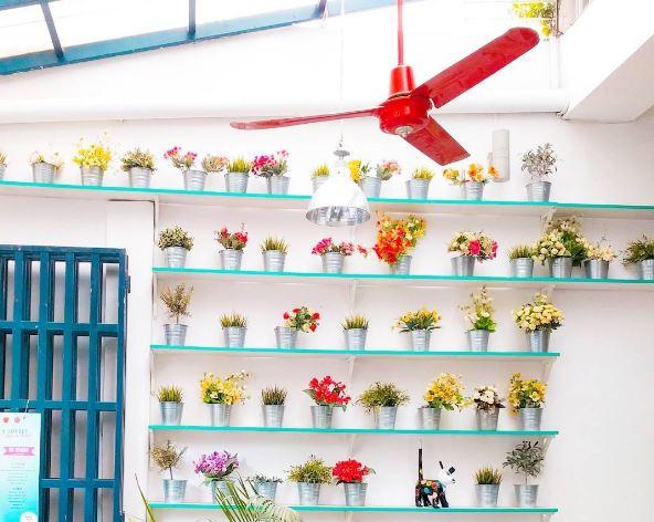 shop 240 phnom penh
